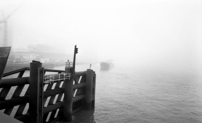 erasmus in de mist