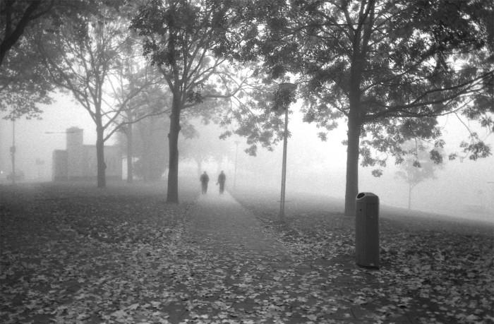 rdam in de mist